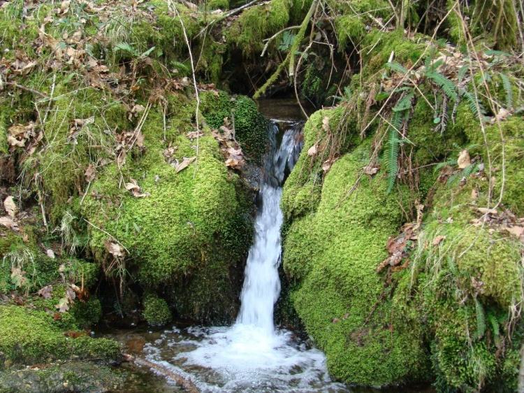 Capacitação dos associados da Unitagri - Gestão Ambiental e outorga de água